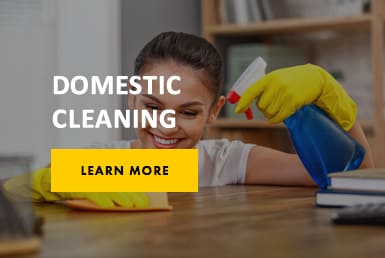 domestic cleaning contractors london